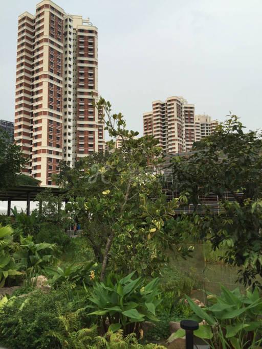 新加坡爱心家园
