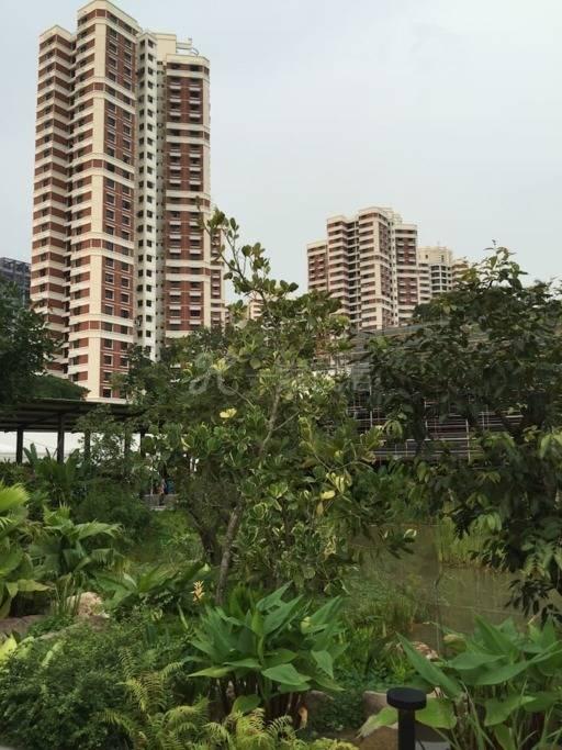 新加坡爱心家园@2