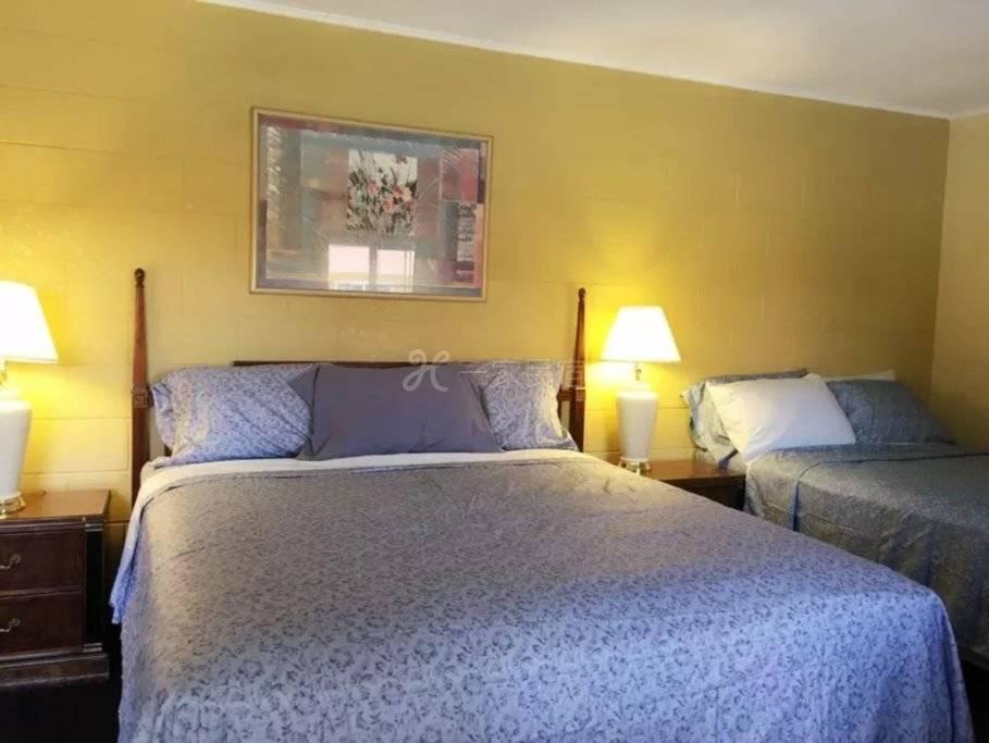 双床套房 36平米