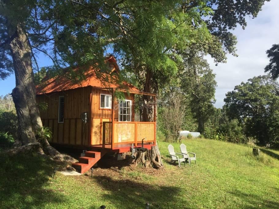夏威夷大岛森林中的小木屋 山谷景 海景房
